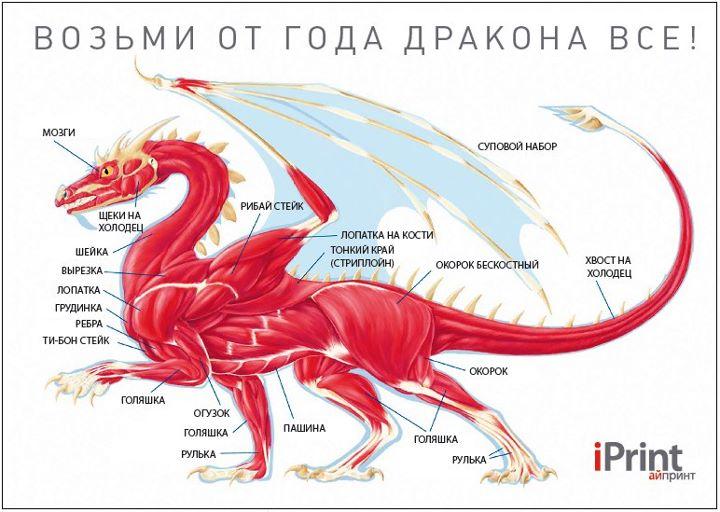 Драконы связаны с магией и умеют выдыхать не только пламя .Драконы - летающие рептилии, покрытые чешуей.