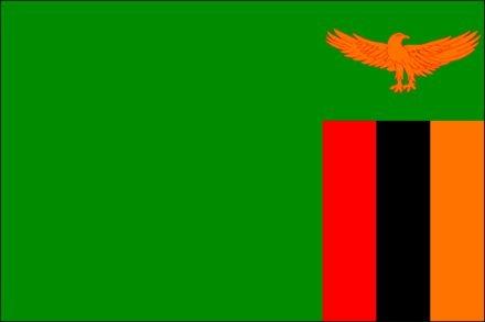 Топ-20 оригинальных национальных флагов