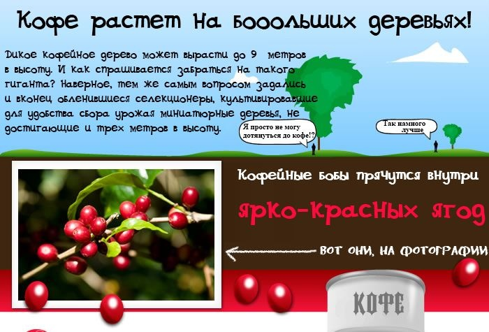 14 фактов про кофе